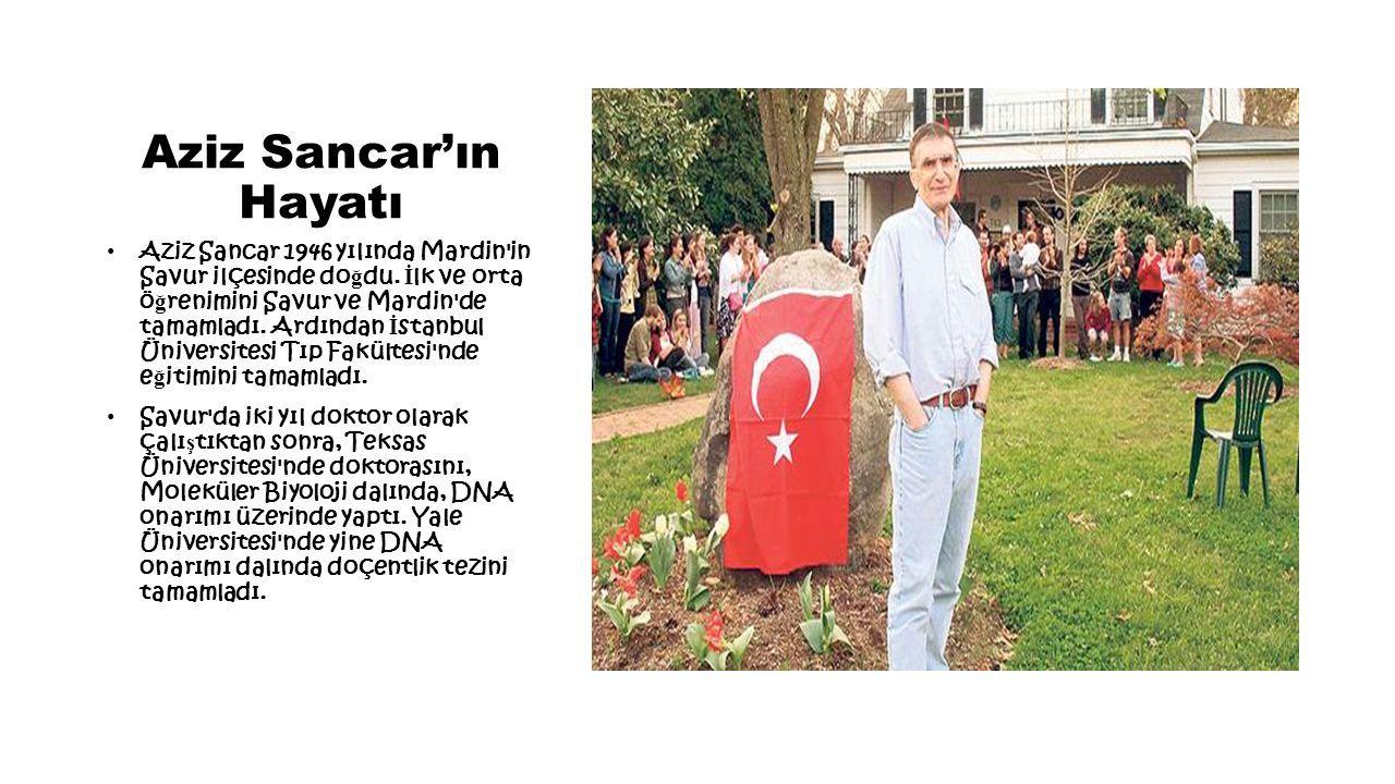 Aziz Sancar'ın Hayatı Aziz Sancar 1946 yılında Mardin in Savur ilçesinde do ğ du.