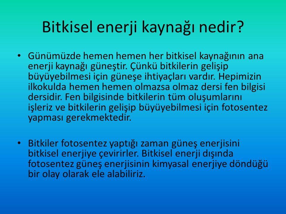 Bitkisel enerji kaynağı nedir.