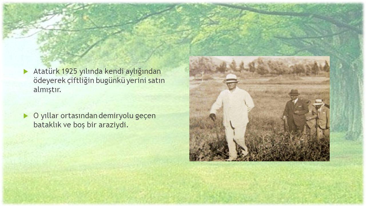  Atatürk 1925 yılında kendi aylığından ödeyerek çiftliğin bugünkü yerini satın almıştır.  O yıllar ortasından demiryolu geçen bataklık ve boş bir ar