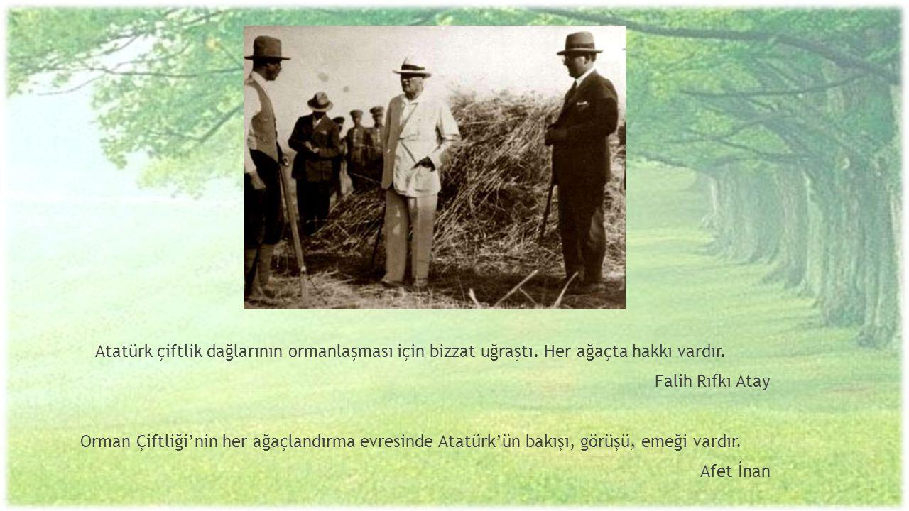 Atatürk çiftlik dağlarının ormanlaşması için bizzat uğraştı. Her ağaçta hakkı vardır. Falih Rıfkı Atay Orman Çiftliği'nin her ağaçlandırma evresinde A