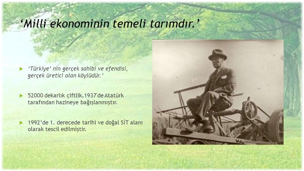 'Milli ekonominin temeli tarımdır.'  'Türkiye' nin gerçek sahibi ve efendisi, gerçek üretici olan köylüdür.'  52000 dekarlık çiftlik,1937'de Atatürk