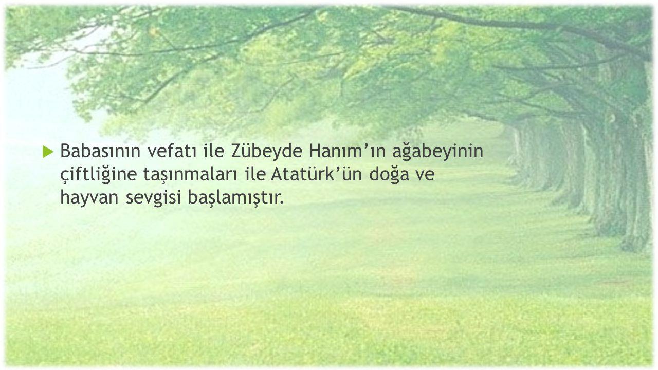  Babasının vefatı ile Zübeyde Hanım'ın ağabeyinin çiftliğine taşınmaları ile Atatürk'ün doğa ve hayvan sevgisi başlamıştır.