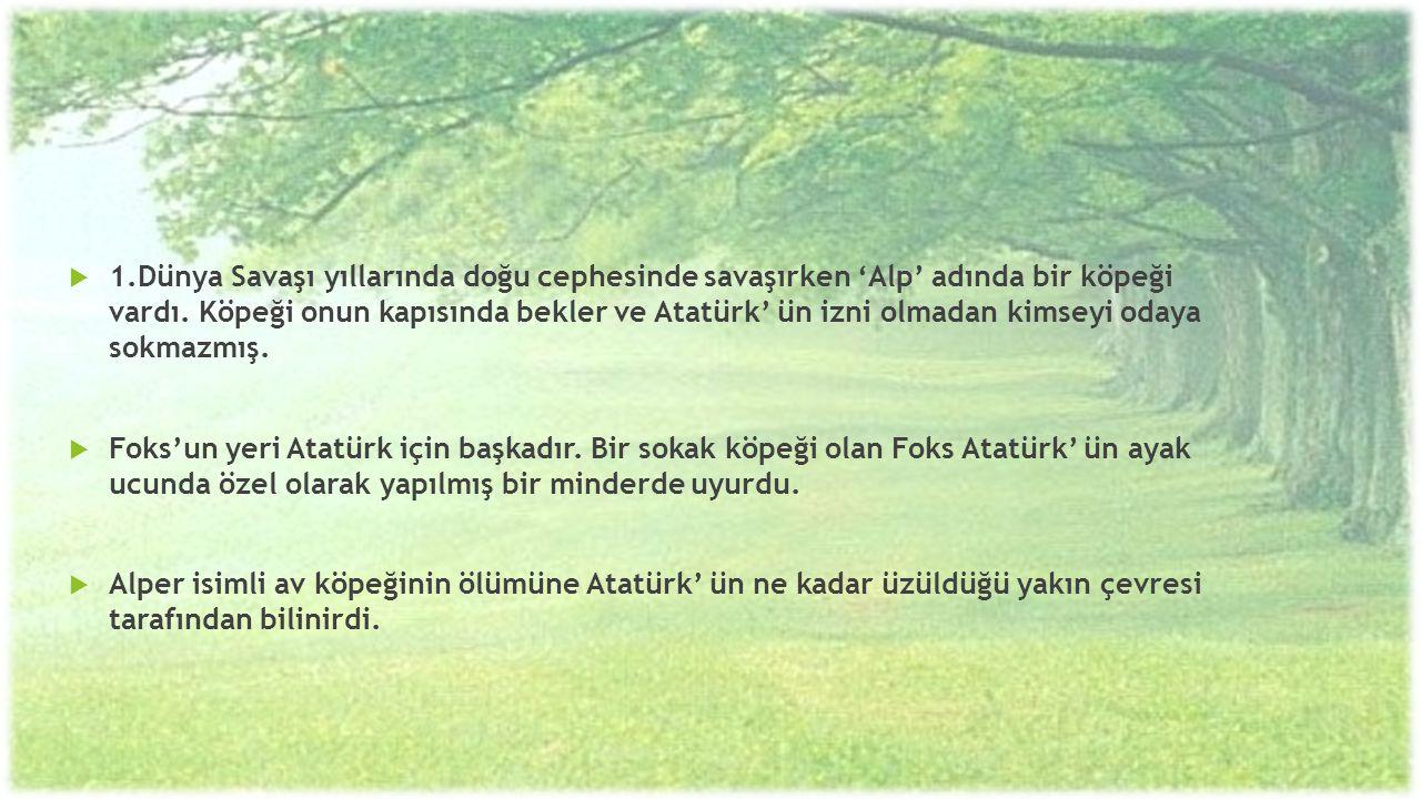  1.Dünya Savaşı yıllarında doğu cephesinde savaşırken 'Alp' adında bir köpeği vardı. Köpeği onun kapısında bekler ve Atatürk' ün izni olmadan kimseyi