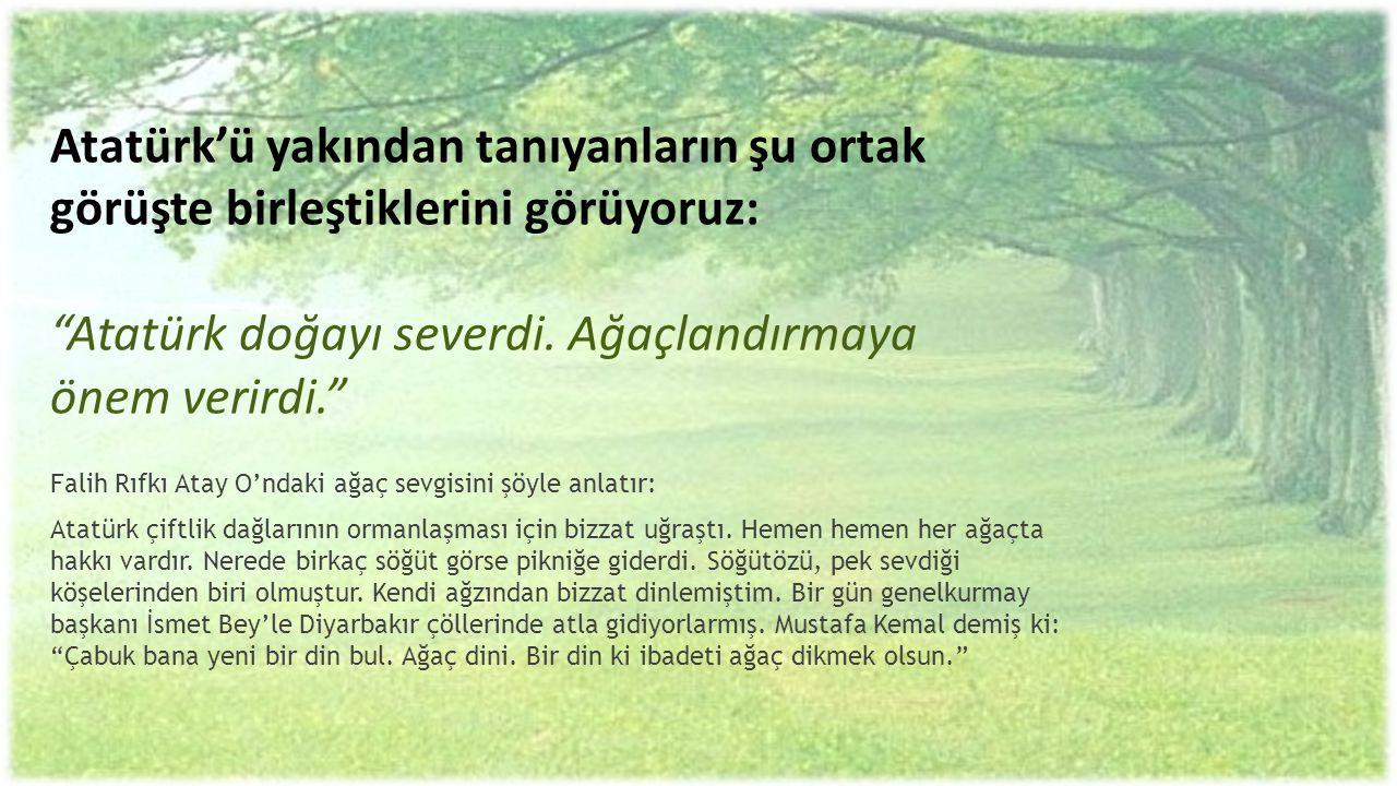 """Atatürk'ü yakından tanıyanların şu ortak görüşte birleştiklerini görüyoruz: """"Atatürk doğayı severdi. Ağaçlandırmaya önem verirdi."""" Falih Rıfkı Atay O'"""
