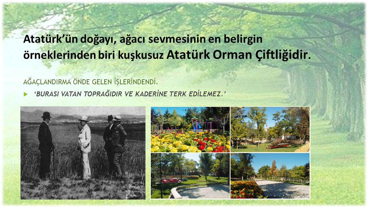 Atatürk'ün doğayı, ağacı sevmesinin en belirgin örneklerinden biri kuşkusuz Atatürk Orman Çiftliğidir. AĞAÇLANDIRMA ÖNDE GELEN İŞLERİNDENDİ.  'BURASI