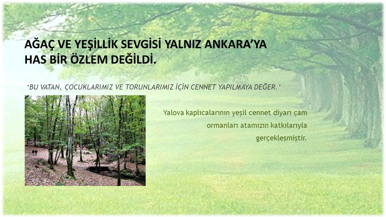 Atatürk çiftlik dağlarının ormanlaşması için bizzat uğraştı.