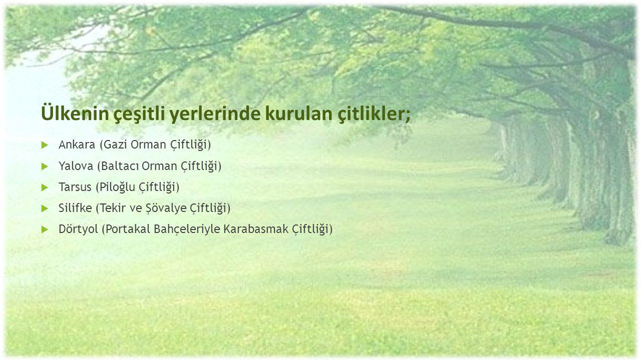 Ülkenin çeşitli yerlerinde kurulan çitlikler;  Ankara (Gazi Orman Çiftliği)  Yalova (Baltacı Orman Çiftliği)  Tarsus (Piloğlu Çiftliği)  Silifke (
