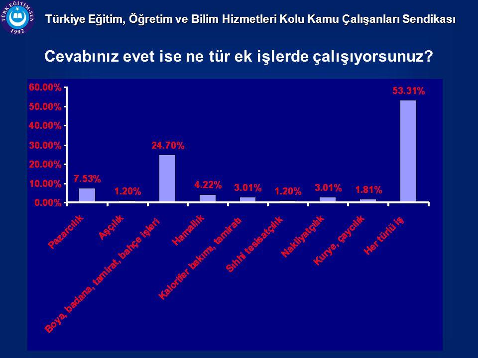 Türkiye Eğitim, Öğretim ve Bilim Hizmetleri Kolu Kamu Çalışanları Sendikası Cevabınız evet ise ne tür ek işlerde çalışıyorsunuz?
