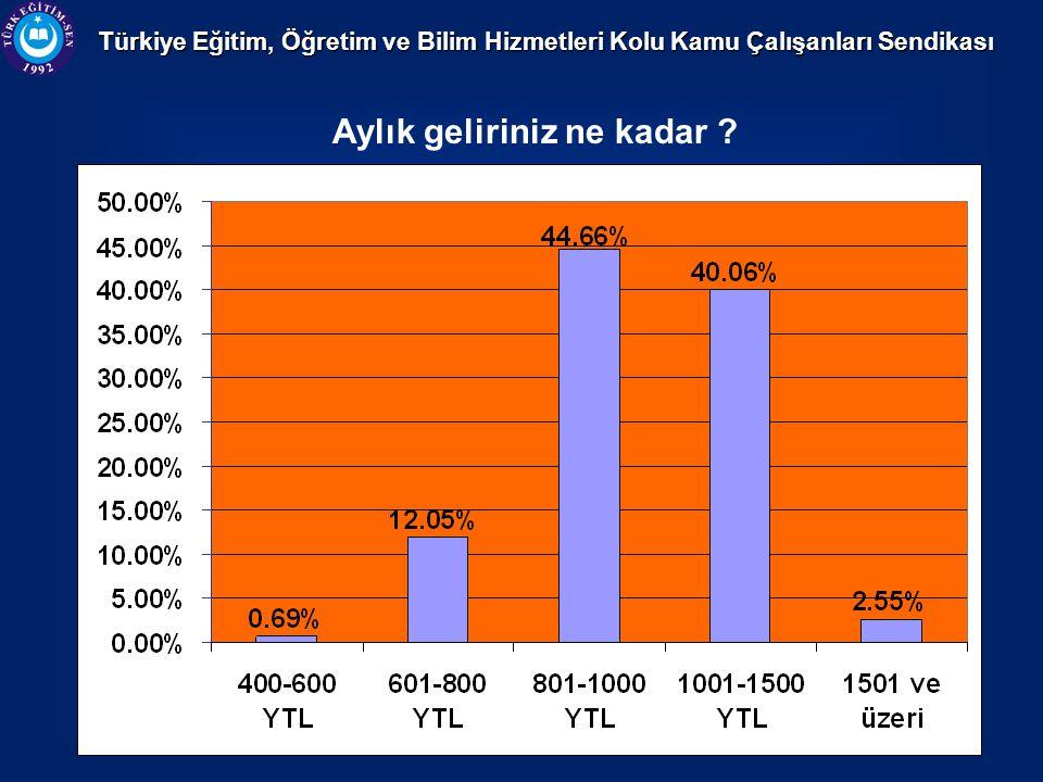 Türkiye Eğitim, Öğretim ve Bilim Hizmetleri Kolu Kamu Çalışanları Sendikası Aylık geliriniz ne kadar ?