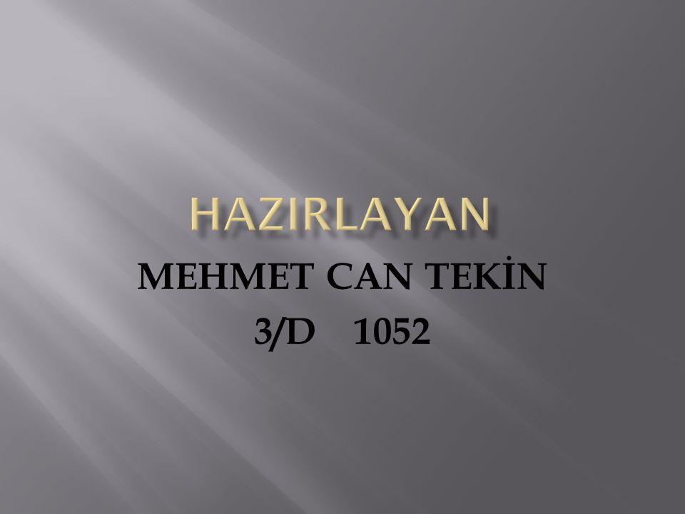 MEHMET CAN TEKİN 3/D 1052