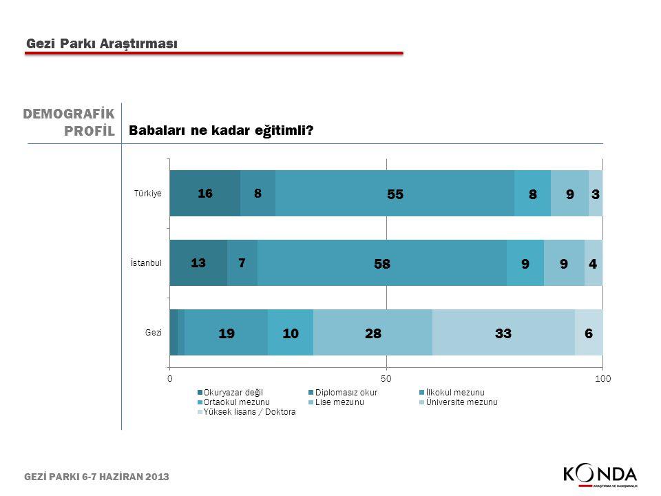 GEZİ PARKI 6-7 HAZİRAN 2013 Gezi Parkı Araştırması Babaları ne kadar eğitimli? DEMOGRAFİK PROFİL