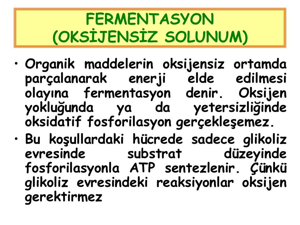 FERMENTASYON (OKSİJENSİZ SOLUNUM) Organik maddelerin oksijensiz ortamda parçalanarak enerji elde edilmesi olayına fermentasyon denir.