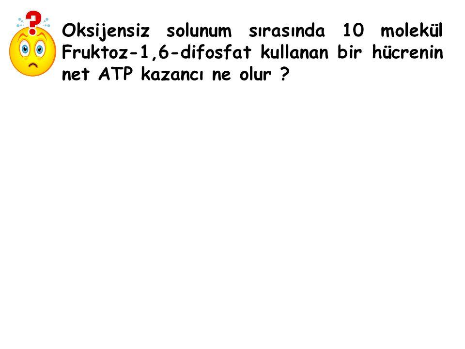 Oksijensiz solunum sırasında 10 molekül Fruktoz-1,6-difosfat kullanan bir hücrenin net ATP kazancı ne olur ?