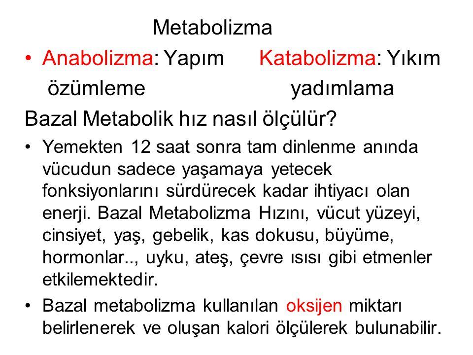 Metabolizma Anabolizma: Yapım Katabolizma: Yıkım özümleme yadımlama Bazal Metabolik hız nasıl ölçülür.