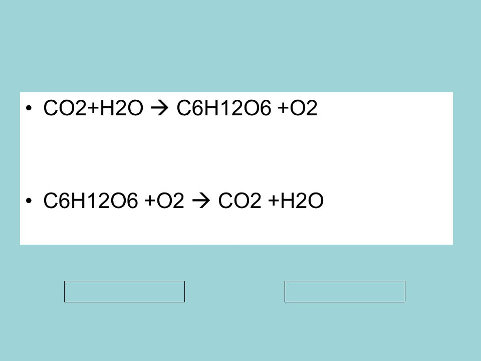 Krebs döngüsünde 2 molekül Asetil-CoA dan: 4 CO 2 2 ATP (Substrat düzeyinde fosf) 6 NADH + H + 2 FADH 2 Piruvatın yükseltgenmesi sırasında: 1 piruvattan 2 piruvattan 1 CO 2 2 CO 2 1 NADH + H + 2 NADH+ H + 1 asetil coA 2 asetil coA ol uşur.