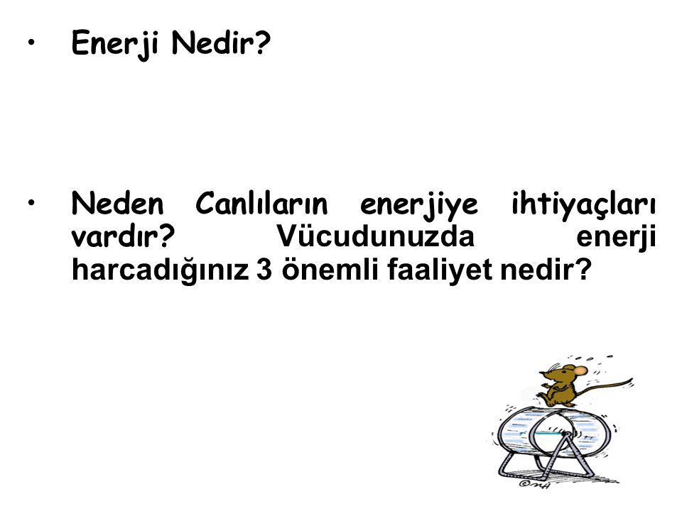 NADH 2 NAD + Pirüvat (3C) CO 2 Asetaldehit (2C) Etil Alkol (2C) C 6 H 12 0 6 +2ATP 2C 2 H 5 OH +2CO 2 + 4ATP