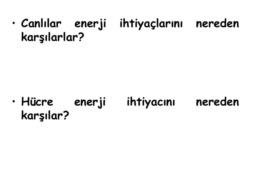 HÜCRELERİN KULLANABİLECEĞİ ENERJİ ( ATP ) Görevi: Yapısı: Hücrelerde meydana gelen metabolizma olayları için gerekli enerji ATP den sağlanır.