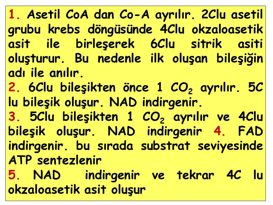 1.Asetil CoA dan Co-A ayrılır.