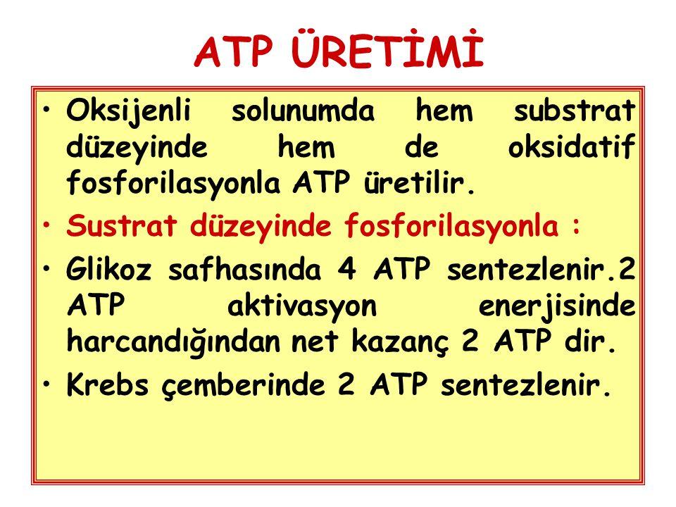 ATP ÜRETİMİ Oksijenli solunumda hem substrat düzeyinde hem de oksidatif fosforilasyonla ATP üretilir.