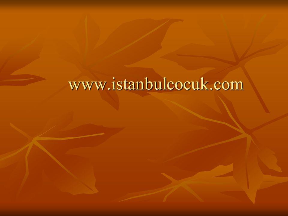 www.istanbulcocuk.com