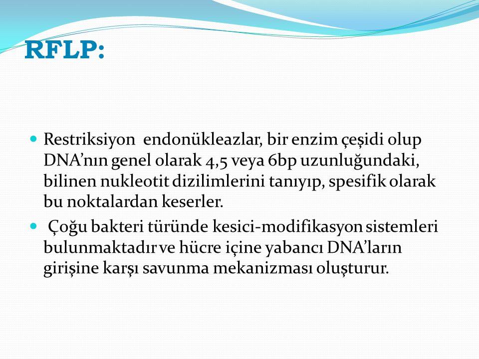 RFLP: Restriksiyon endonükleazlar, bir enzim çeşidi olup DNA'nın genel olarak 4,5 veya 6bp uzunluğundaki, bilinen nukleotit dizilimlerini tanıyıp, spe