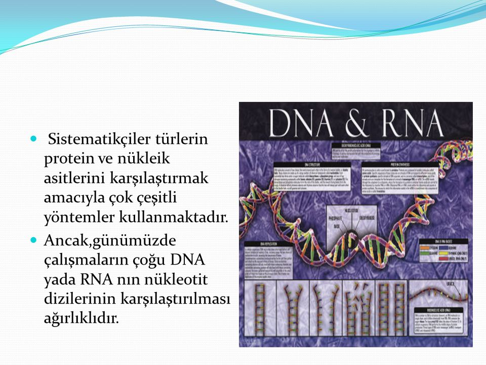 Sistematikçiler türlerin protein ve nükleik asitlerini karşılaştırmak amacıyla çok çeşitli yöntemler kullanmaktadır. Ancak,günümüzde çalışmaların çoğu