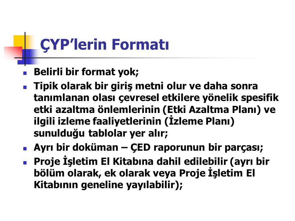 ÇYP'lerin Formatı Belirli bir format yok; Tipik olarak bir giriş metni olur ve daha sonra tanımlanan olası çevresel etkilere yönelik spesifik etki aza