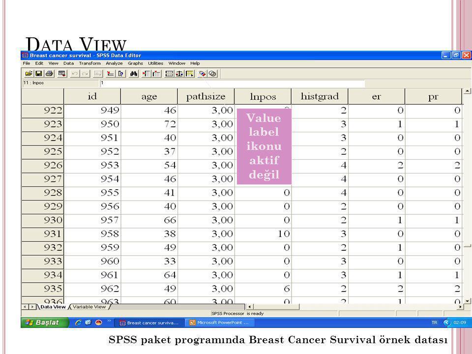 D ATA V IEW SPSS paket programında Breast Cancer Survival örnek datası Value label ikonu aktif değil
