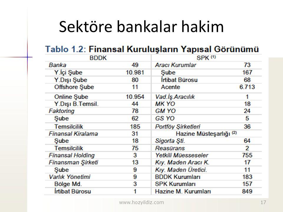 Sektöre bankalar hakim www.hozyildiz.com17