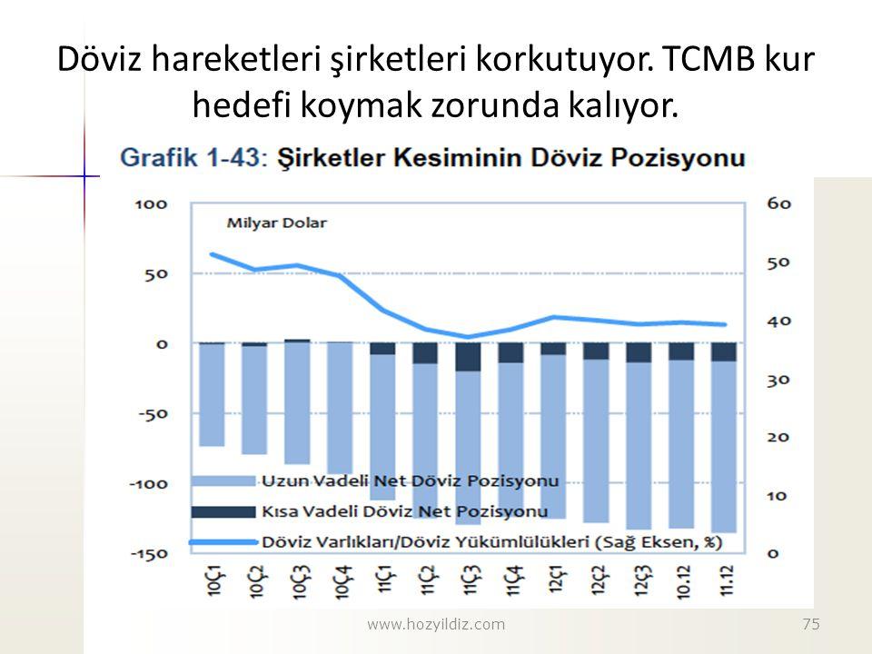 Döviz hareketleri şirketleri korkutuyor. TCMB kur hedefi koymak zorunda kalıyor. www.hozyildiz.com75