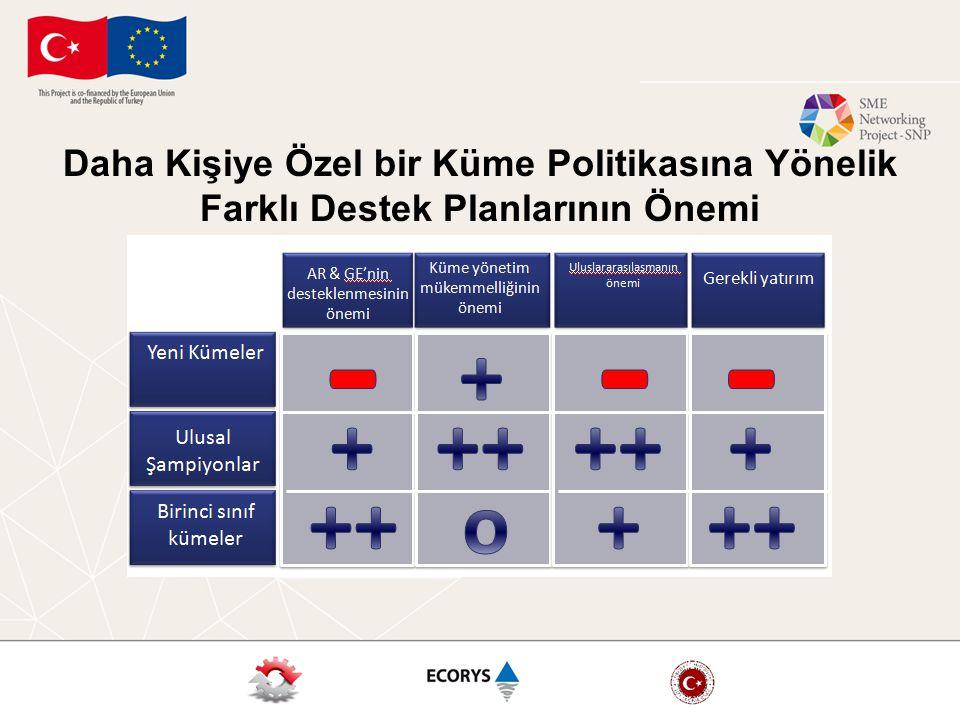 Daha Kişiye Özel bir Küme Politikasına Yönelik Farklı Destek Planlarının Önemi