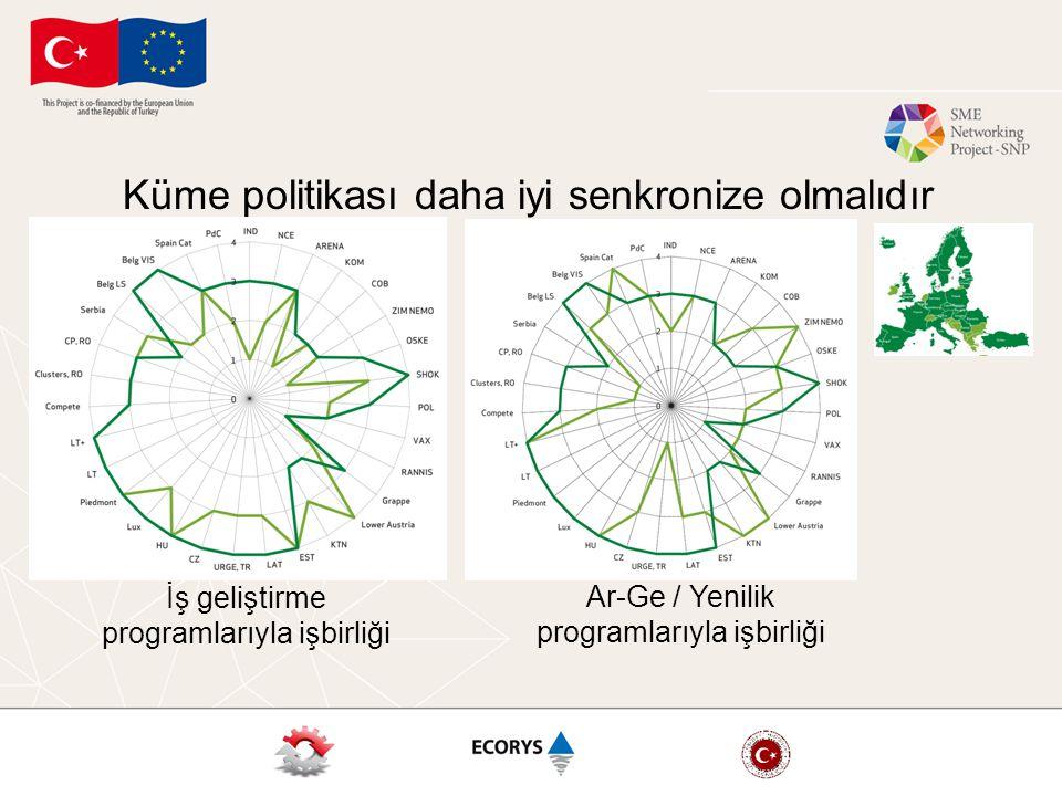 Küme politikası daha iyi senkronize olmalıdır İş geliştirme programlarıyla işbirliği Ar-Ge / Yenilik programlarıyla işbirliği