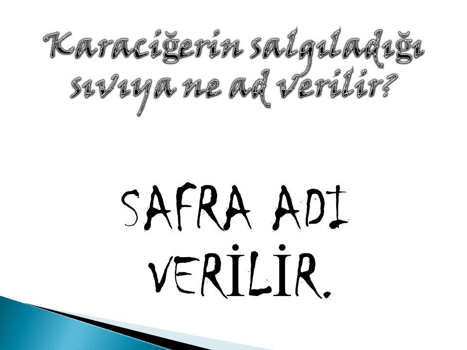 SAFRA ADI VER İ L İ R.