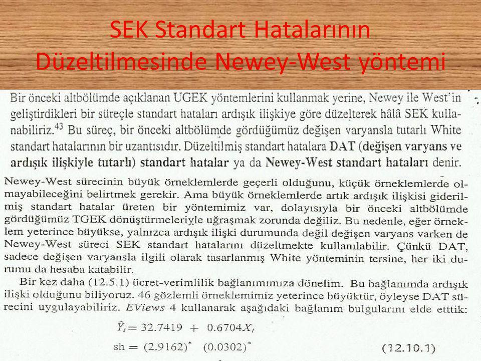 SEK Standart Hatalarının Düzeltilmesinde Newey-West yöntemi