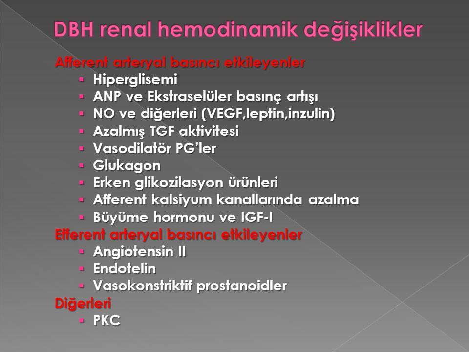 Afferent arteryal basıncı etkileyenler  Hiperglisemi  ANP ve Ekstraselüler basınç artışı  NO ve diğerleri (VEGF,leptin,inzulin)  Azalmış TGF aktiv