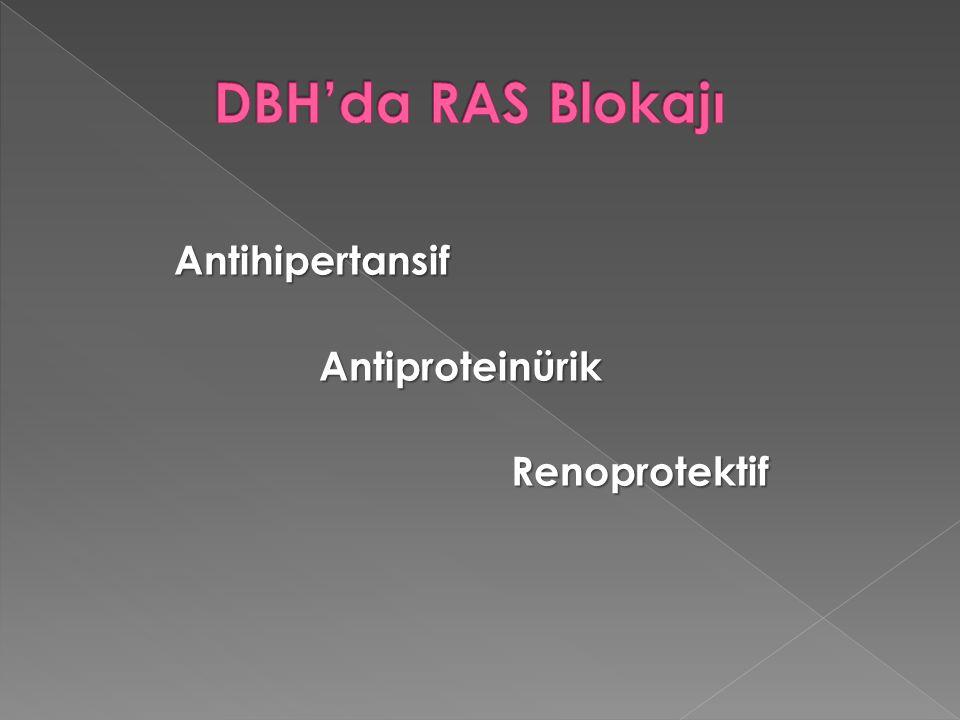 AntihipertansifAntiproteinürikRenoprotektif