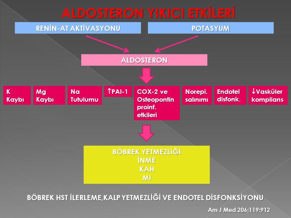 LDOSTERON YIKICI ETKİLERİ ALDOSTERON YIKICI ETKİLERİ RENİN-AT AKTİVASYONU POTASYUM ALDOSTERON K Kaybı Mg Kaybı Na Tutulumu  PAI-1 COX-2 ve Osteoponti