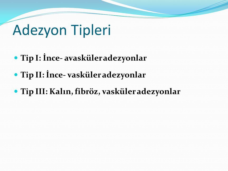 Adezyon Tipleri Tip I: İnce- avasküler adezyonlar Tip II: İnce- vasküler adezyonlar Tip III: Kalın, fibröz, vasküler adezyonlar