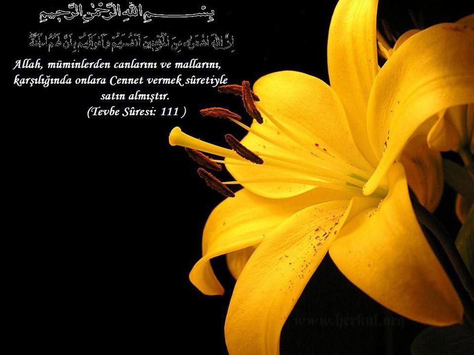 Allah, müminlerden canlarını ve mallarını, karşılığında onlara Cennet vermek sûretiyle satın almıştır.