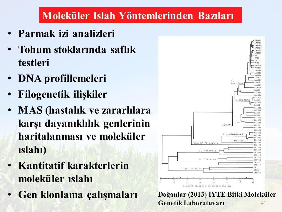 Parmak izi analizleri Tohum stoklarında saflık testleri DNA profillemeleri Filogenetik ilişkiler MAS (hastalık ve zararlılara karşı dayanıklılık genle
