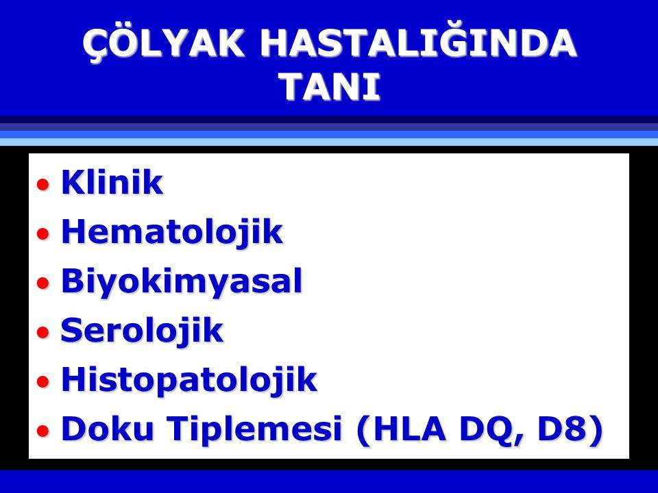 ÇÖLYAK HASTALIĞINDA TANI Klinik Hematolojik Biyokimyasal Serolojik Histopatolojik Doku Tiplemesi (HLA DQ, D8)