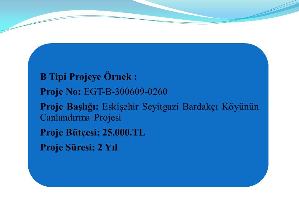 B Tipi Projeye Örnek : Proje No: EGT-B-300609-0260 Proje Başlığı: Eskişehir Seyitgazi Bardakçı Köyünün Canlandırma Projesi Proje Bütçesi: 25.000.TL Proje Süresi: 2 Yıl