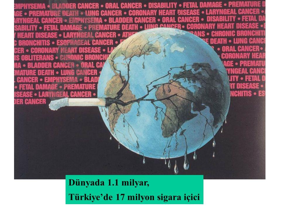 Dünyada 1.1 milyar, Türkiye'de 17 milyon sigara içici
