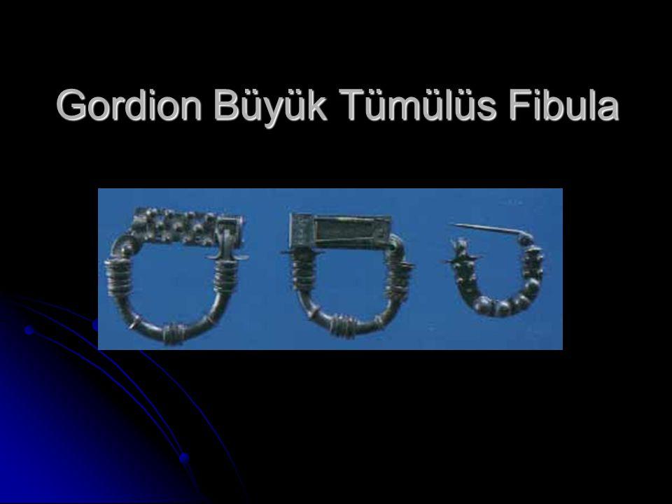 Gordion Büyük Tümülüs Fibula