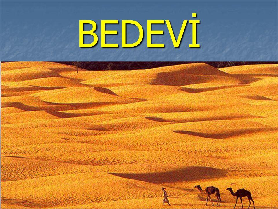 BEDEVİ