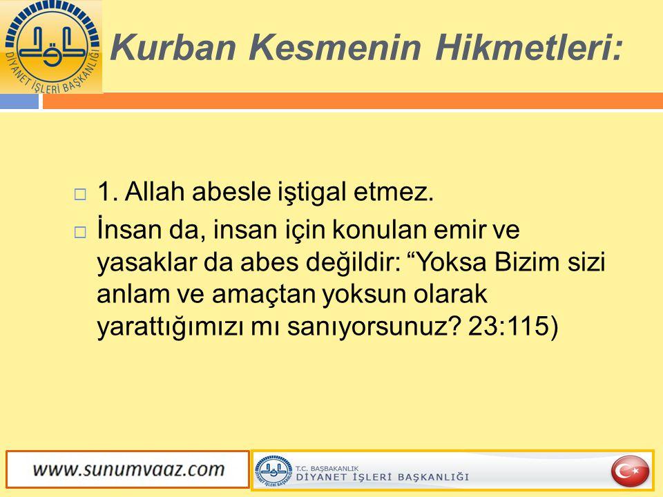 """ 1. Allah abesle iştigal etmez.  İnsan da, insan için konulan emir ve yasaklar da abes değildir: """"Yoksa Bizim sizi anlam ve amaçtan yoksun olarak ya"""