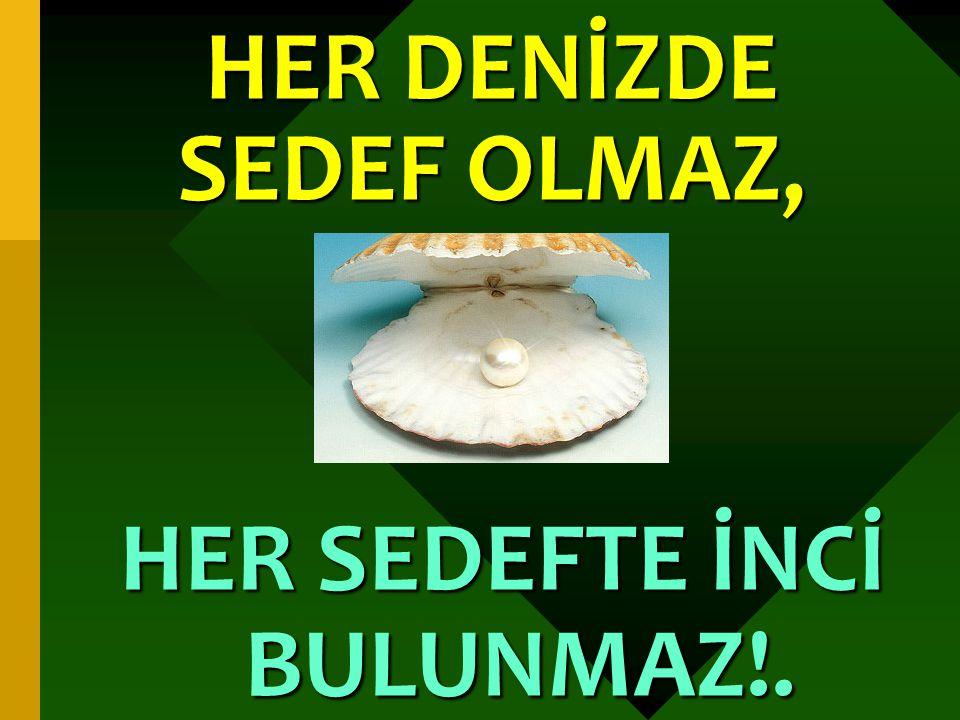 HER DENİZDE SEDEF OLMAZ, HER SEDEFTE İNCİ BULUNMAZ!.