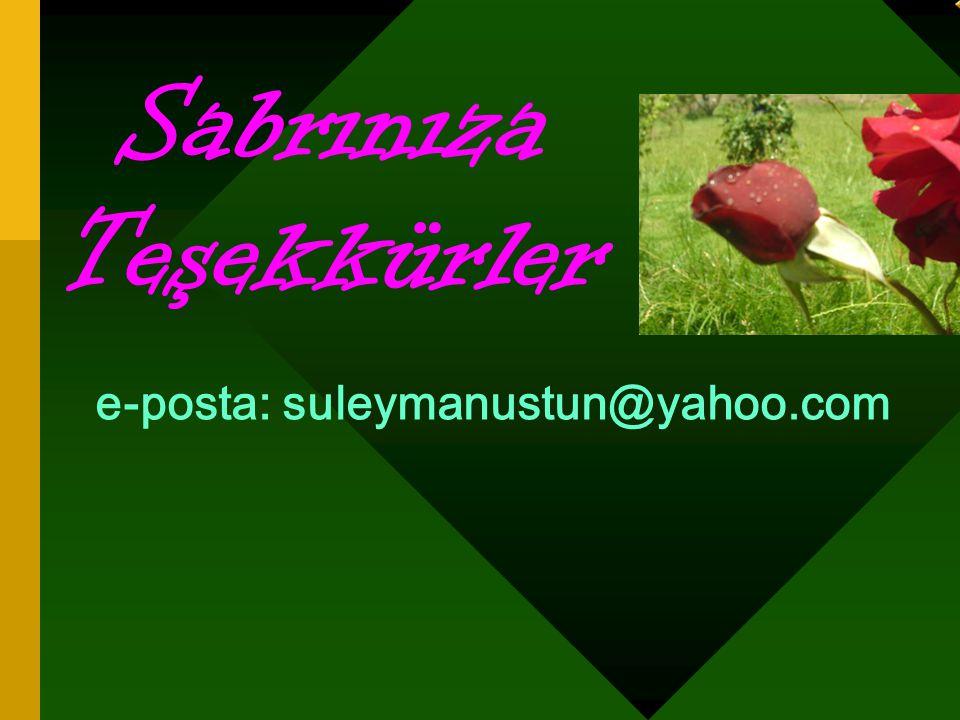 e-posta: suleymanustun@yahoo.com Sabrınıza Teşekkürler