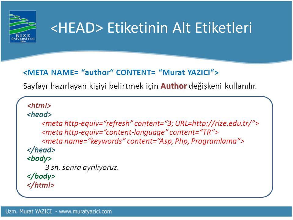 Etiketinin Alt Etiketleri Author Sayfayı hazırlayan kişiyi belirtmek için Author değişkeni kullanılır. 3 sn. sonra ayrılıyoruz.
