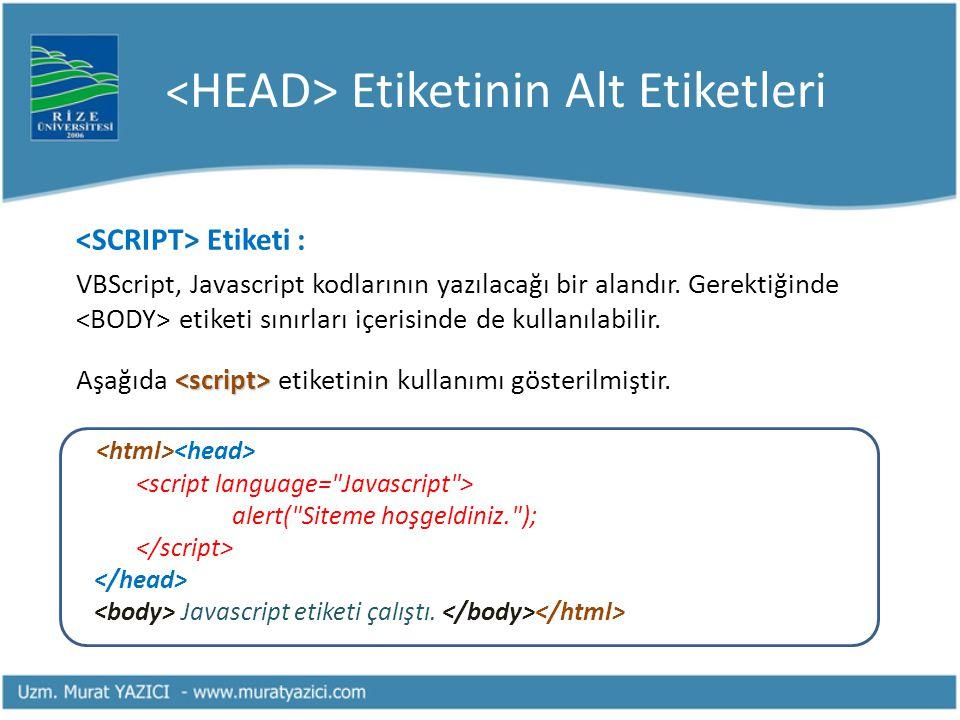 Etiketinin Alt Etiketleri Etiketi : VBScript, Javascript kodlarının yazılacağı bir alandır. Gerektiğinde etiketi sınırları içerisinde de kullanılabili